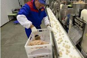 Оператор линии на производстве полуфабрикатов из рыбы